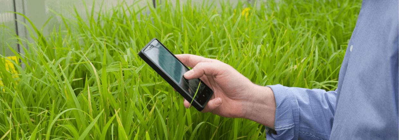 handheld image capture